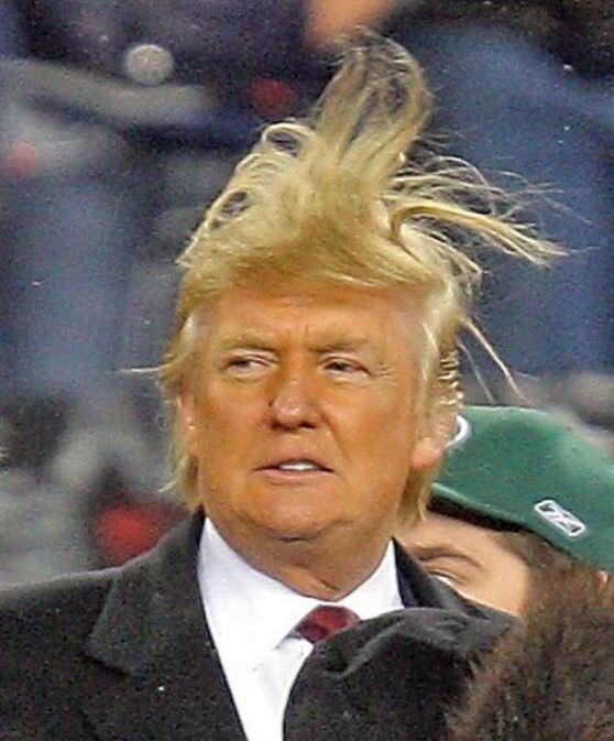 https://images.duckduckgo.com/iu/?u=https%3A%2F%2Fcretoniatimesdotcom.files.wordpress.com%2F2015%2F07%2Fdonald-trump-bad-hair-photo-1.jpg%3Fw%3D640&f=1