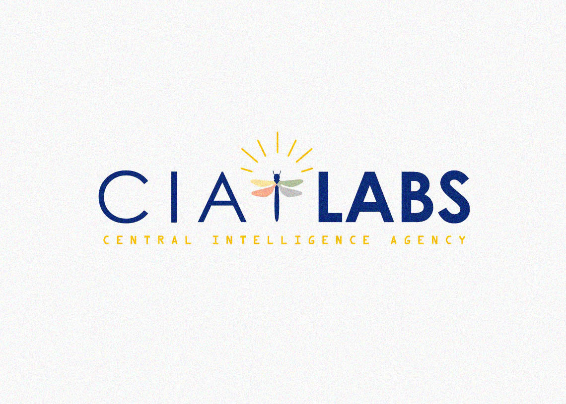 CIA Labs to focus on blockchain research among other areas ...