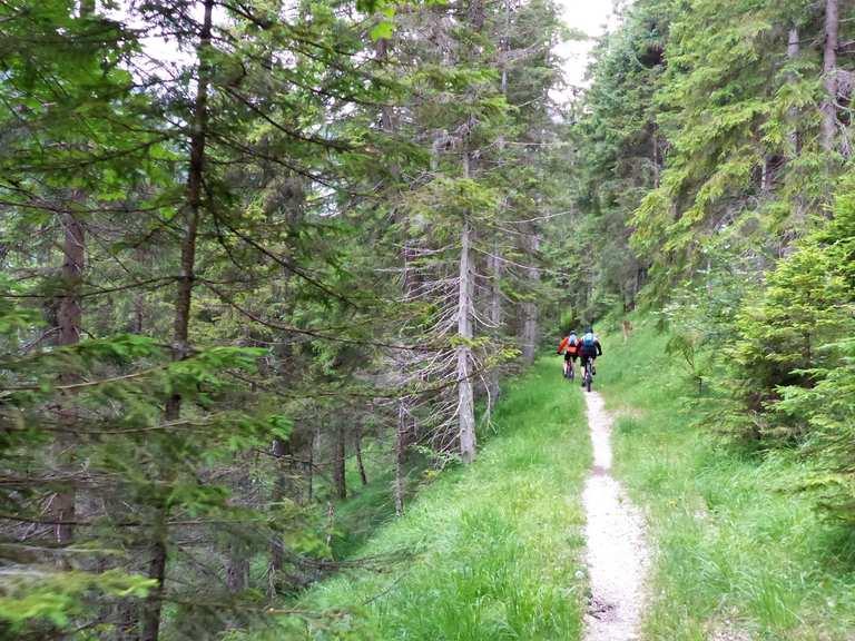 Soiernweg - Lenggries, Bad Tölz-Wolfratshausen | MTB-Trail ...