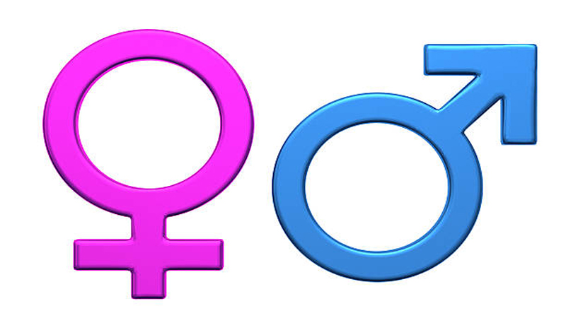 Male or female: who determines a new born's gender ...