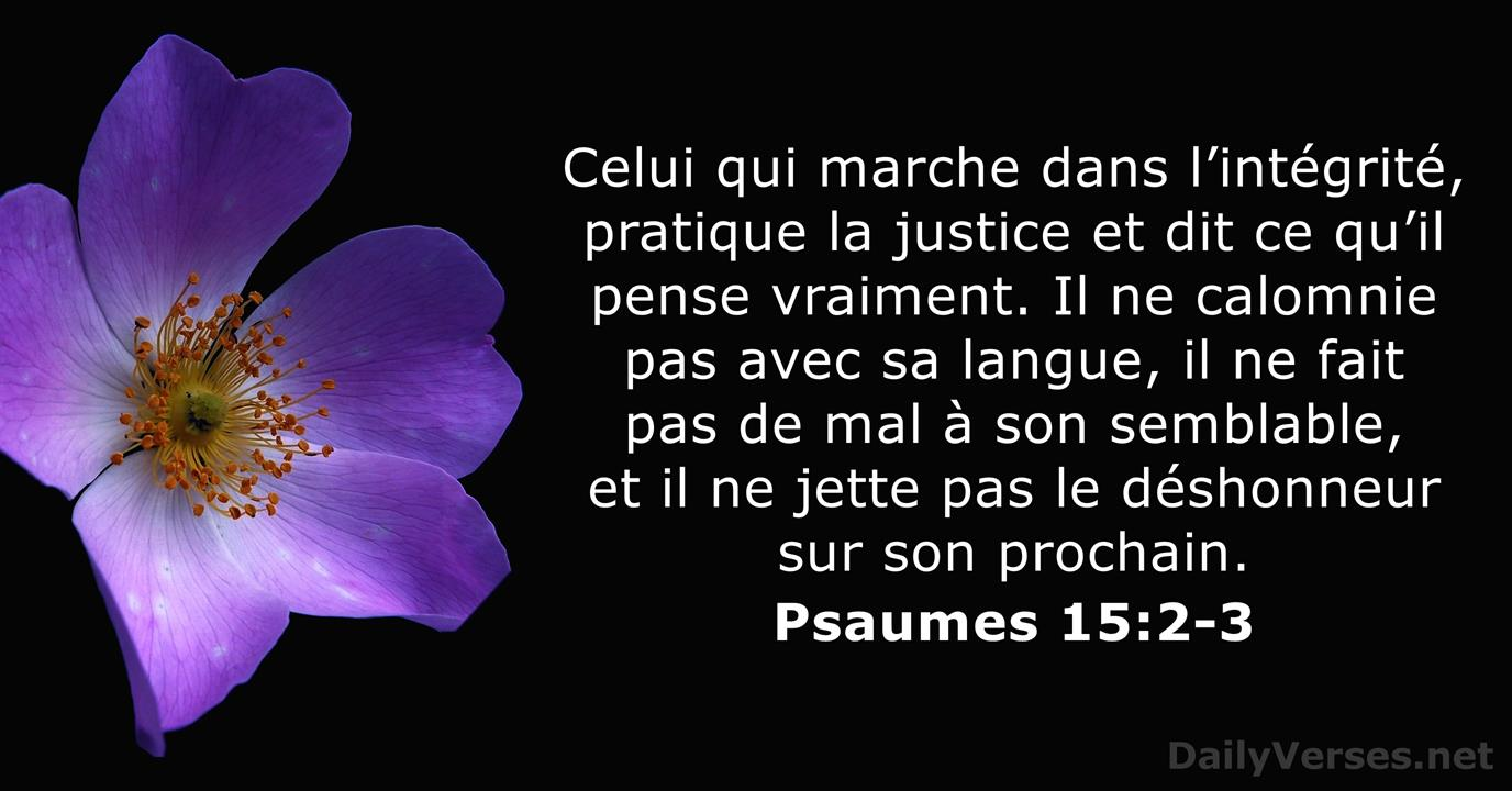 29 Versets Biblique sur la Verité - DailyVerses.net