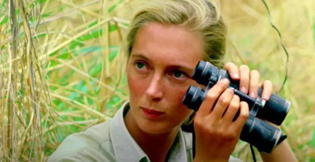"""Dame Jane Goodall: """"It's because of our lack of respect ..."""