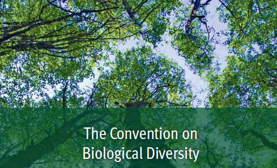 UN Convention on Biological Diversity | Earth Journalism ...