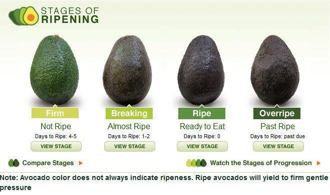 Avocado is very effective in stopping bad breath. It also reduces ...