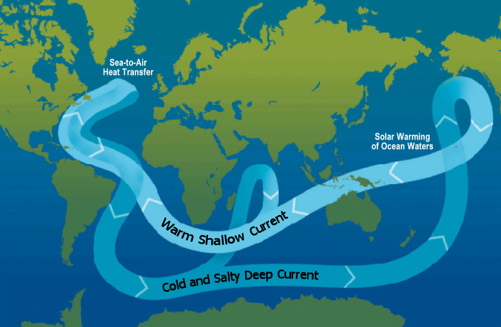 Thermohaline circulation - Energy Education