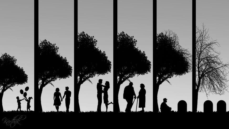 Stages of life.. : pics