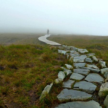 Our Spiritual Journey - Gaia Scenics' View