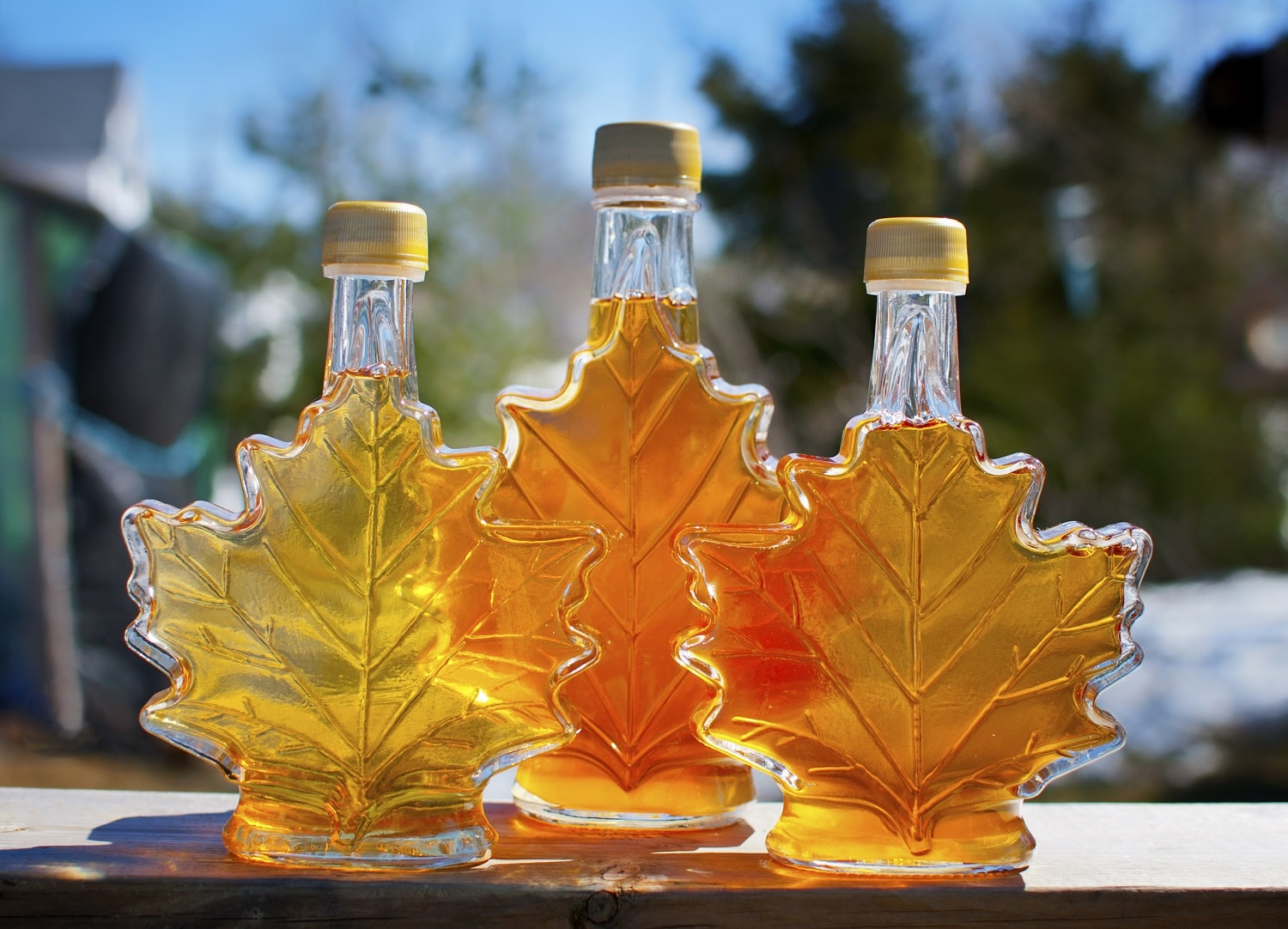 Maple Syrup in Vermont is Some of the Best in the World