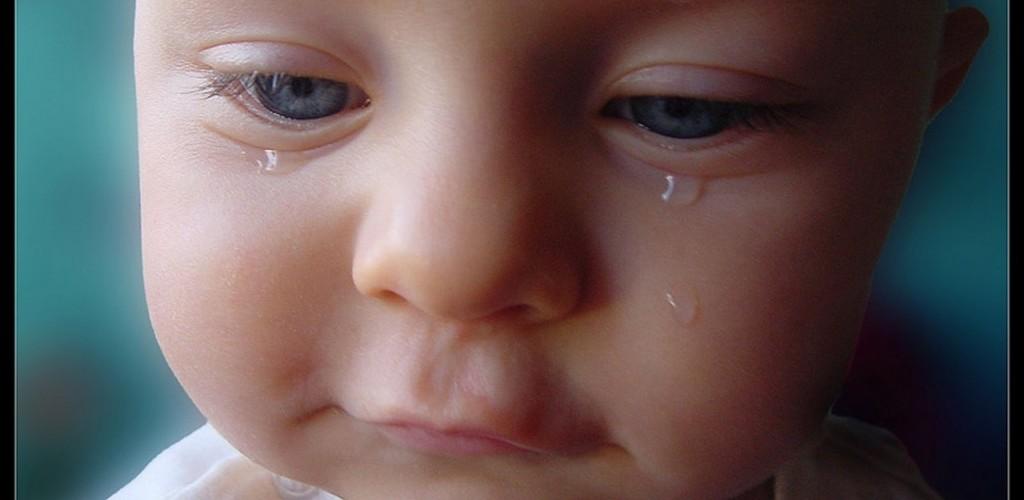 Baby tears Wallpapers - HD Desktop Wallpapers   4k HD
