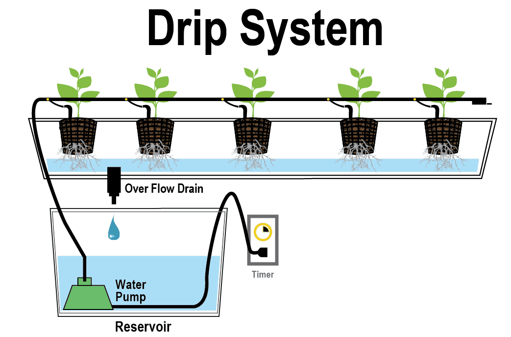 Best Hydroponic Drip System Guide for 2018