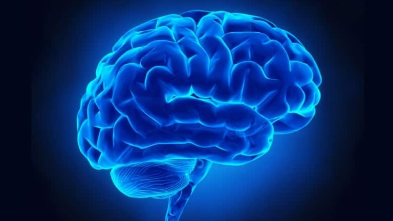 Trauma prompts brain to focus on survival, not 'peripheral ...