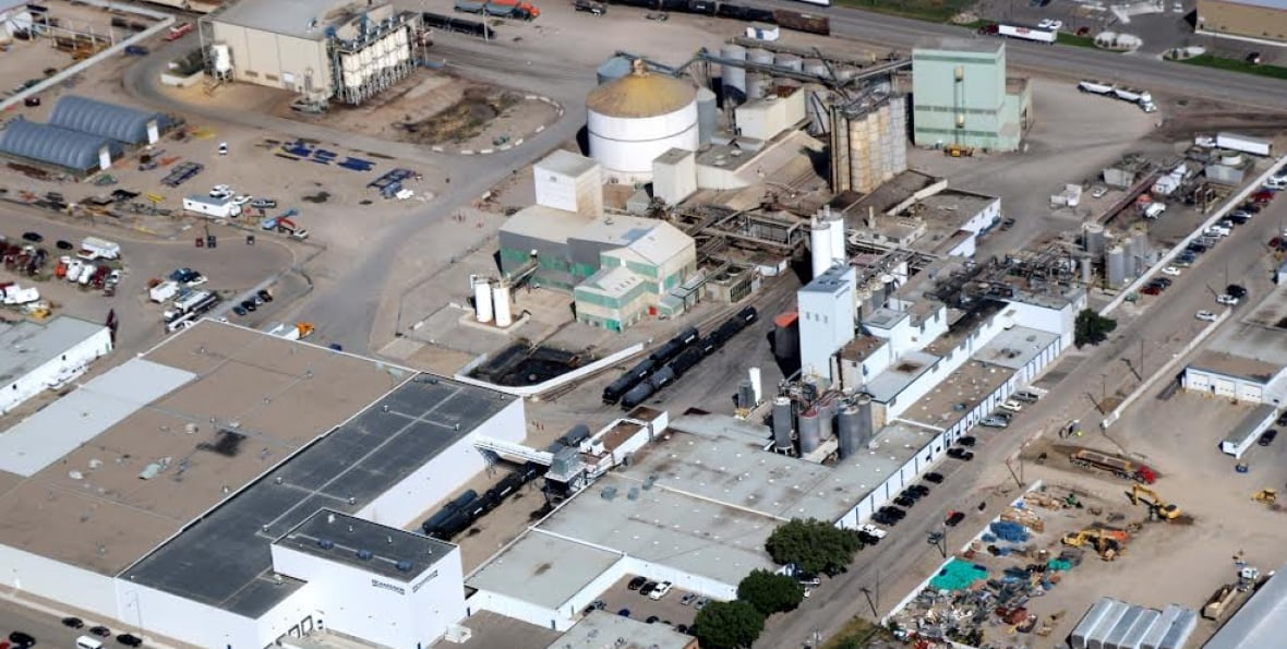 Lethbridge canola plant's $120M facelift to create 'most ...