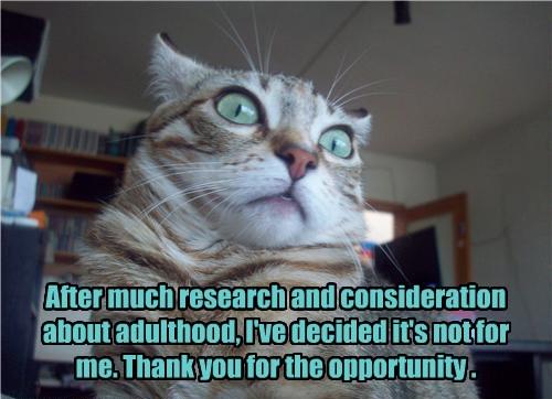 I Don't Wanna Grow Up! - Lolcats - lol   cat memes   funny ...