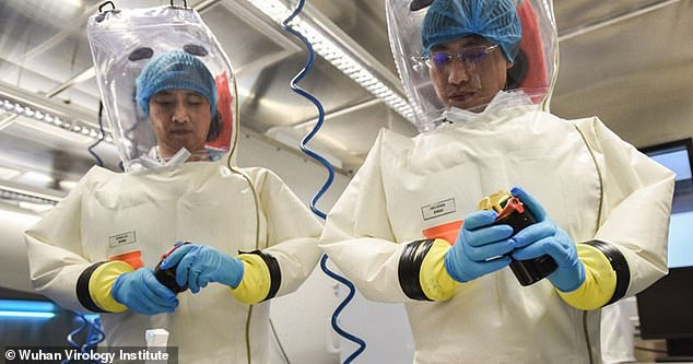 Wuhan, China's coronavirus epicentre, has SARS and Ebola ...