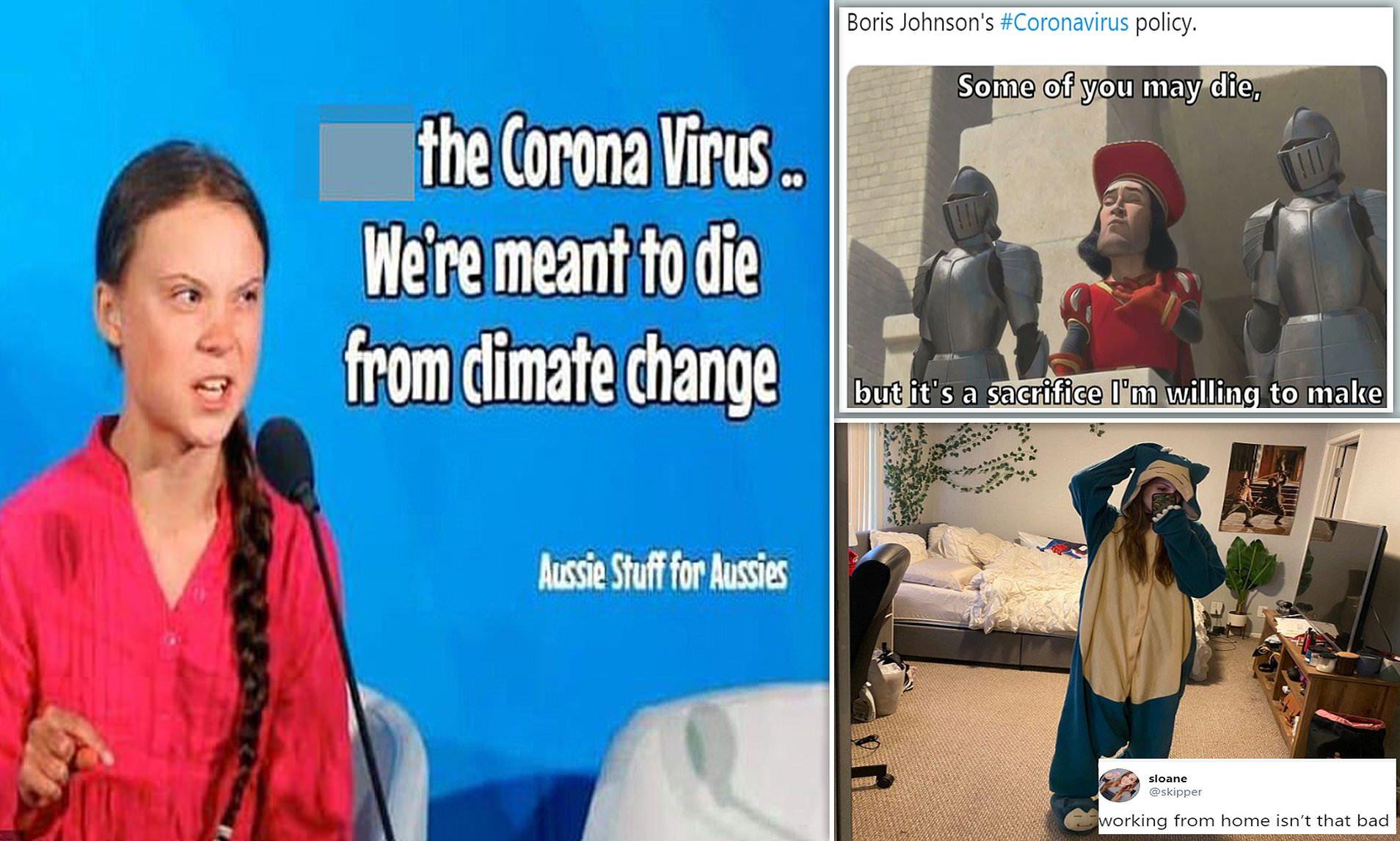 Post Your Favourite Covid19 Meme - Humour - Australian ...