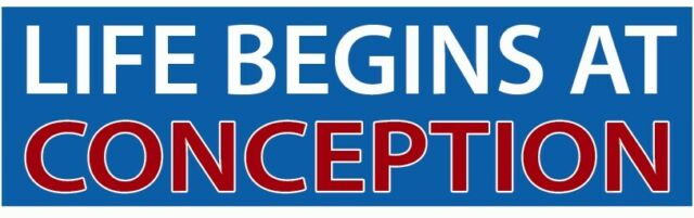 LIFE BEGINS AT CONCEPTION BUMPER STICKER!! A Different one ...