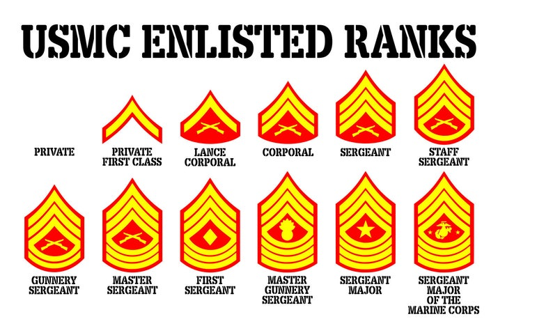 Large USMC Enlisted Rank Chart 3 color vinyl wall decal ...