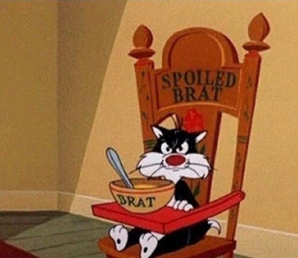 Spoiled Brat Cat Blank Template - Imgflip
