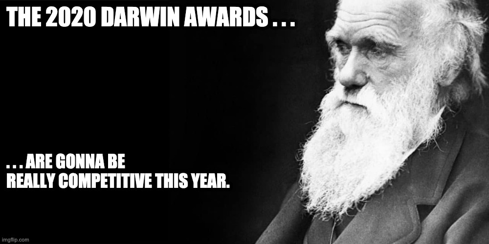 2020 Darwin Awards - Imgflip
