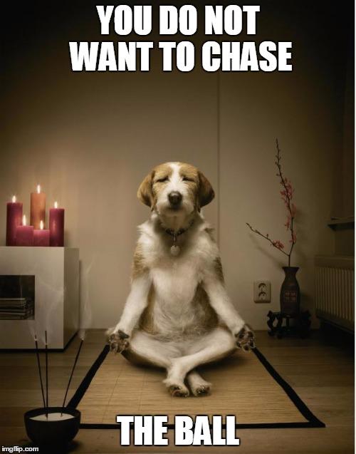 dog meditation funny - Imgflip