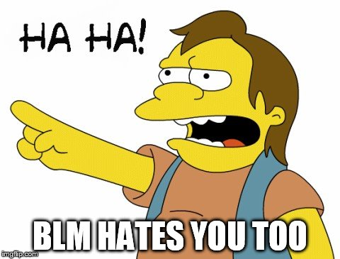 HA HA | BLM HATES YOU TOO | image tagged in ha ha | made w/ Imgflip ...