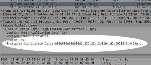 Wireshark screenshot showing encrypted text