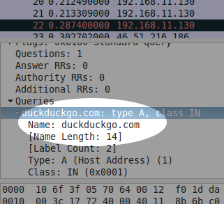 A screenshot of Wireshark showing a domain name highlighted.