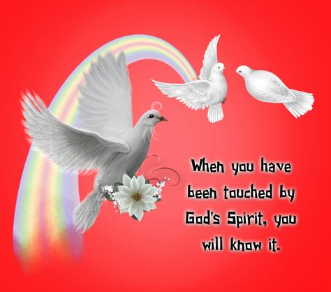 When you have been touched by God's Spirit, you will know ...