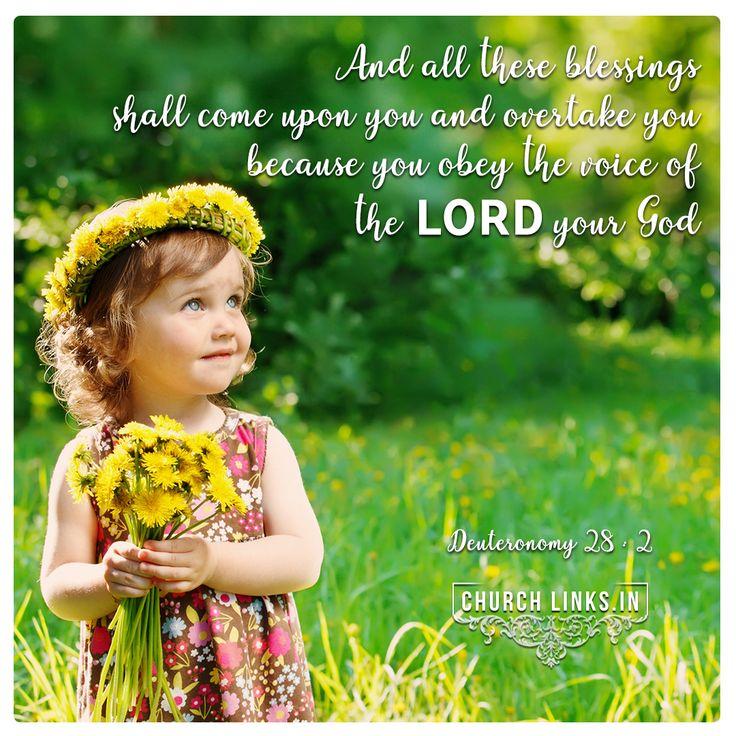 Deuteronomy 28:2 daily bible, daily bible verse, bible ...