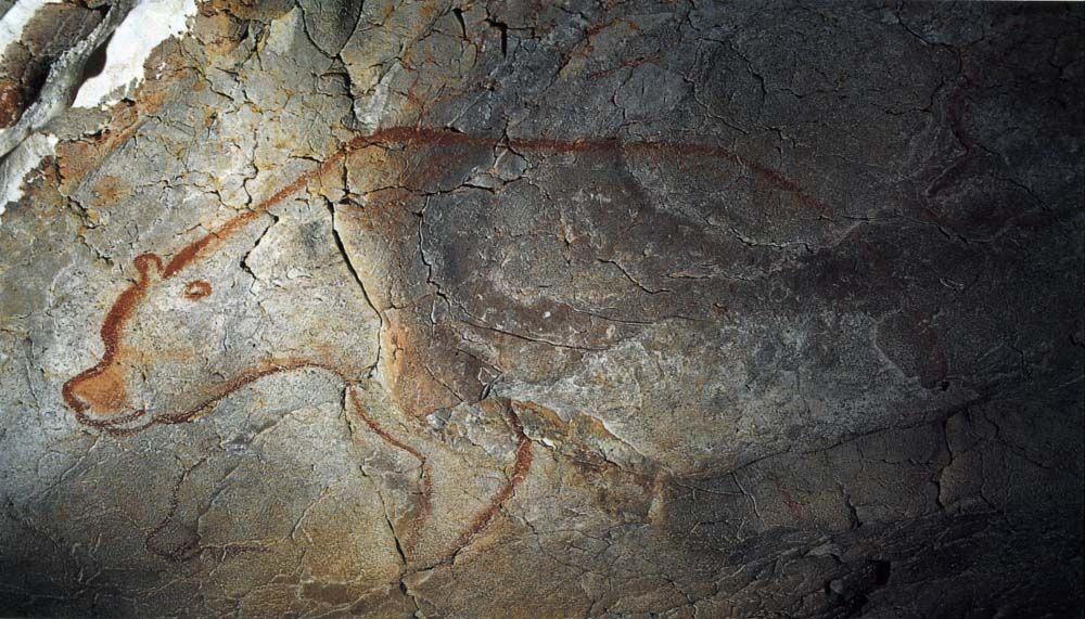 Bear, Chauvet cave painting, ca. 30,000 - 28,000 BCE ...