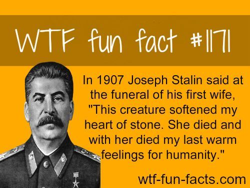 stalin wife | Funny facts, Wtf fun facts, Fun facts