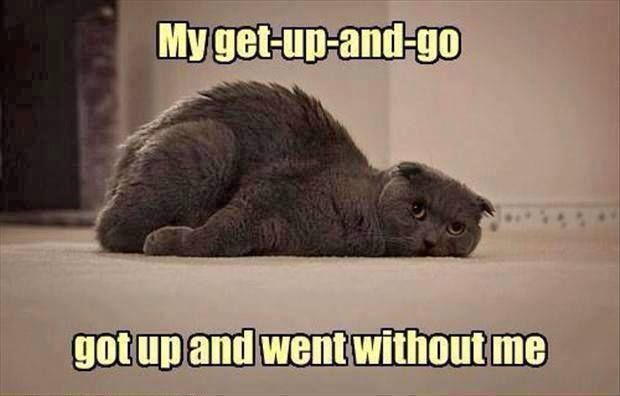 My get up and go funny quotes quote tired funny quote ...