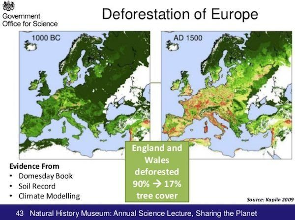 déforestation Europe