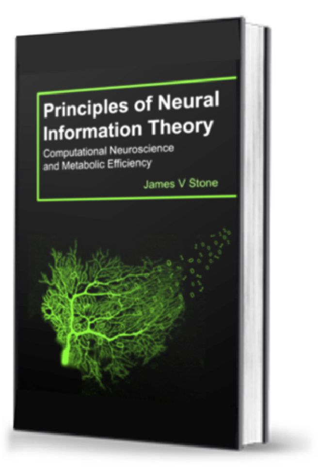 Pin by Jim Stone on neural information theory ...