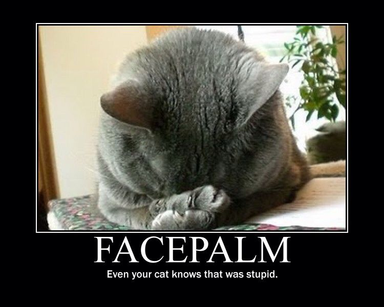 Even your cat knows this was stupid. Facepalm | Facepalm Frenzy | Pinterest | Funny quotes