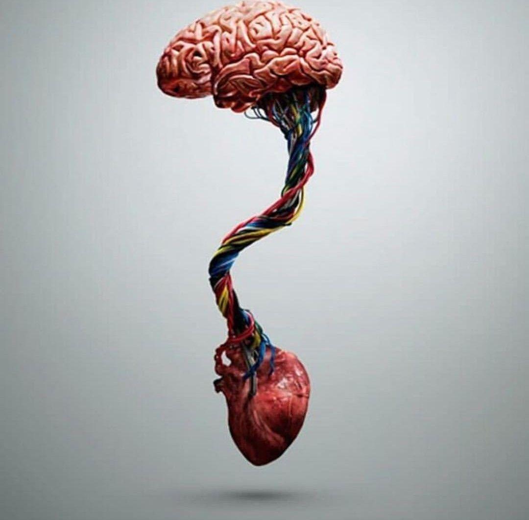 Heart brain connection   Brain art, Tattoo art drawings ...