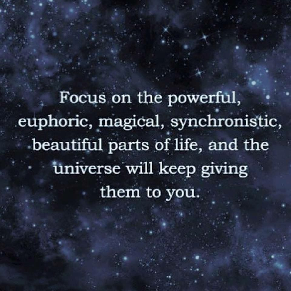 FOCUS on the Powerful, euphoric, magical, synchronistic ...
