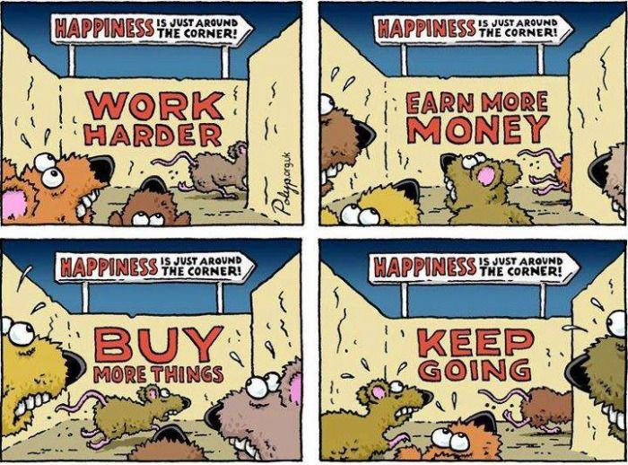 The Rat Race. | Rat race, Money and happiness, Rats