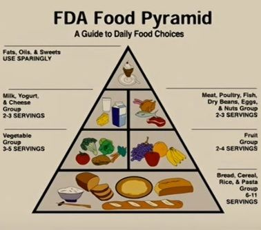Old FDA Food Pyramid | Food pyramid, Dry beans, Fda