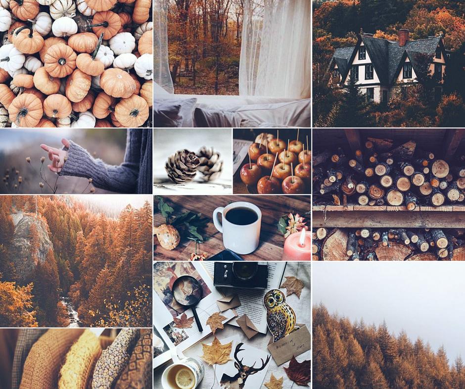 Autumn Mood Board | Autumn aesthetic, Fall mood board, Autumn