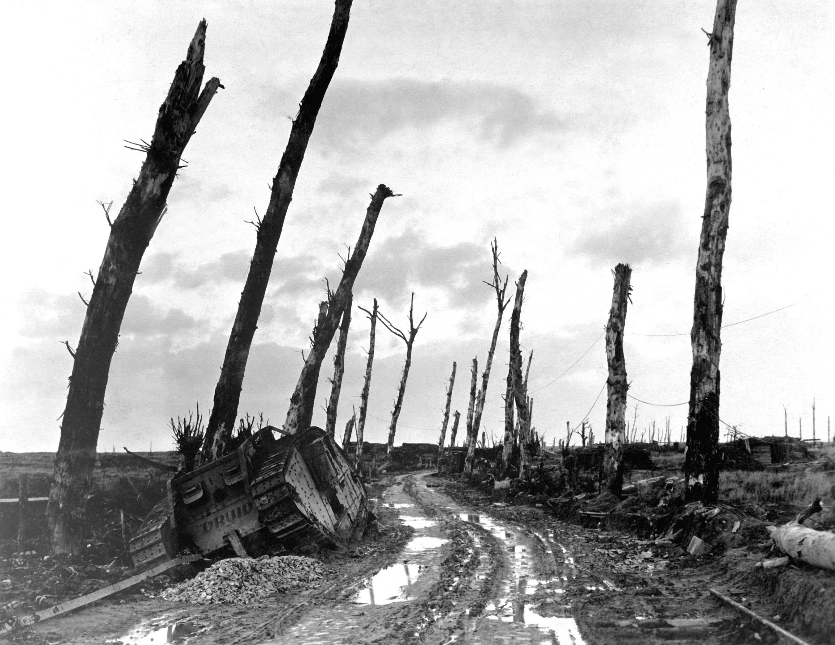 The desolation of war. Poilcapelle, Belgium, 1917.   World ...
