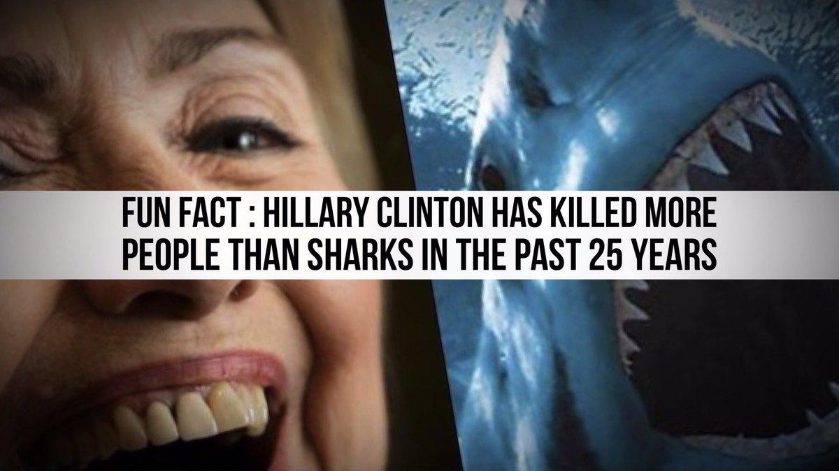 Hillary vs Sharks, who would win? : CNNmemes