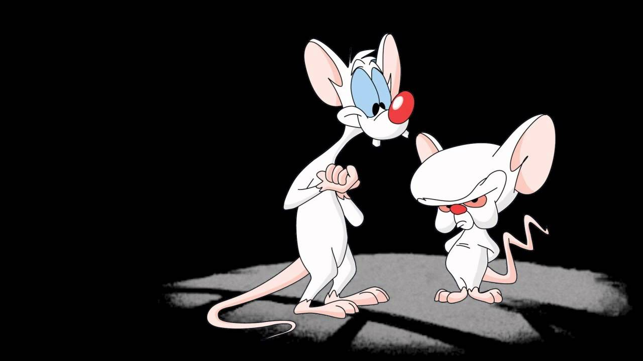 Pinky and the Brain Theme Song Intro HQ with Lyrics - YouTube