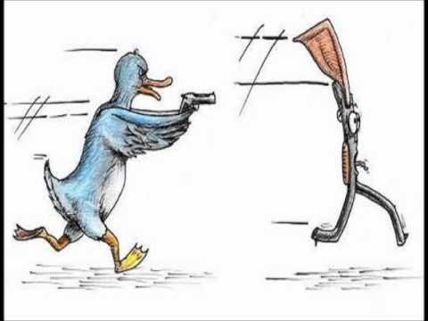 Los pájaros disparándoles a las escopetas - Alternativa ...
