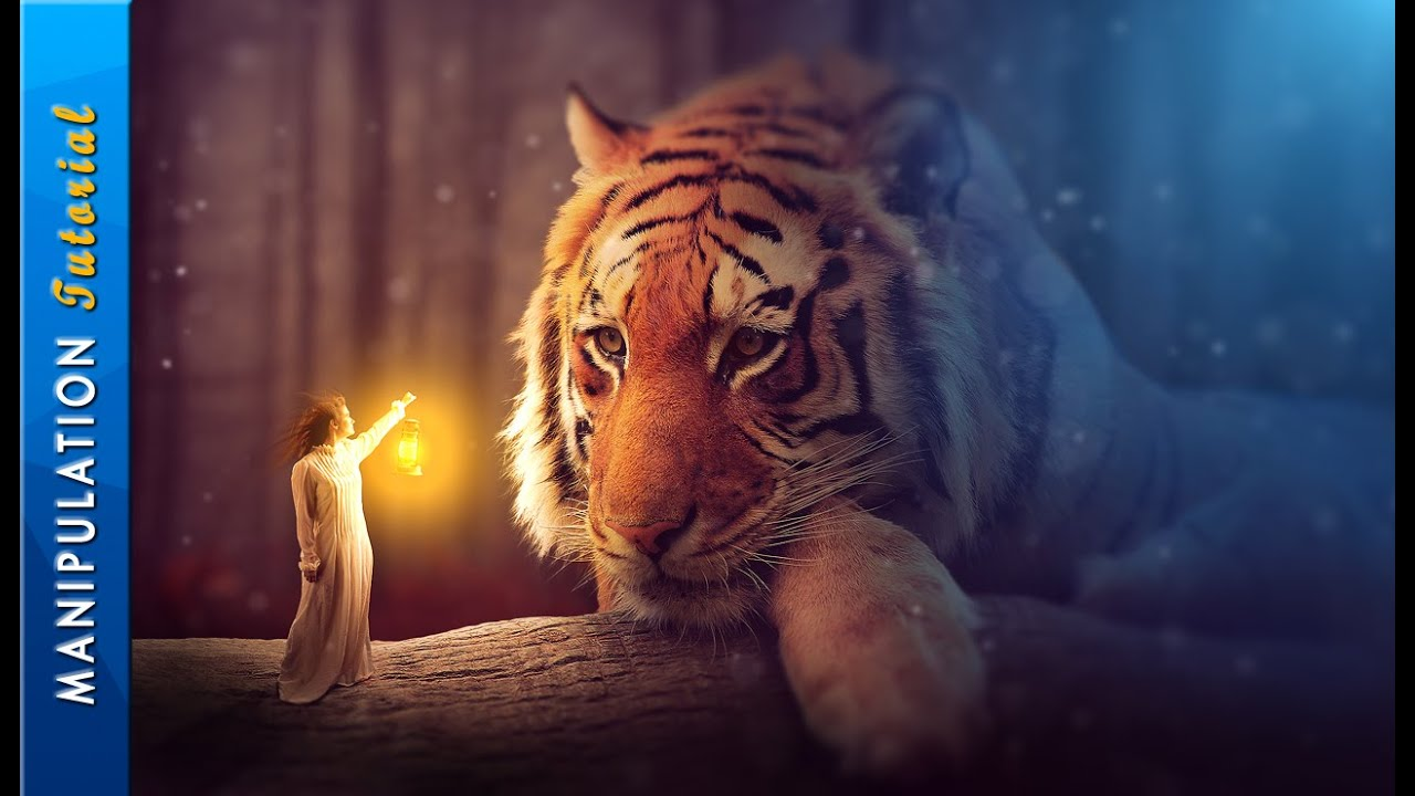 Photoshop Fantasy Photo Manipulation - Photoshop CC ...