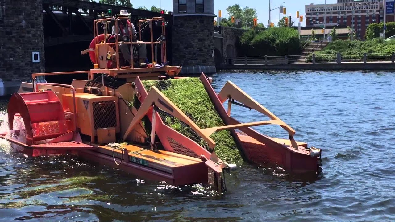 Machine Removes Seaweed from Canal - YouTube