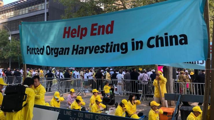 Wesley J. Smith: China Credibly Accused of Organ ...
