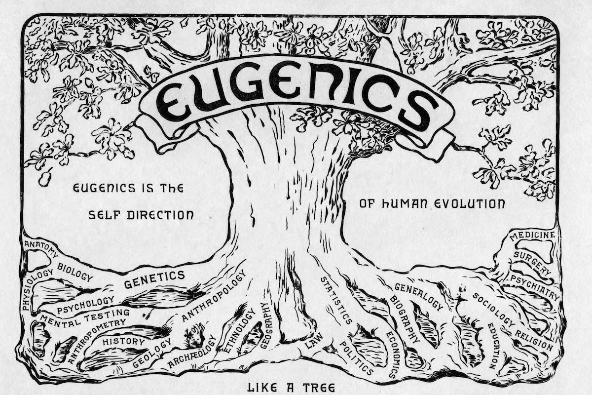 White Supremacy: The Dark Side of Eugenics – The Seattle Star