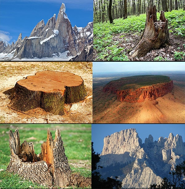 Flat Earth Supporter Claims Mountains are the Ancient Remains of Gigantic Silicon Trees ...