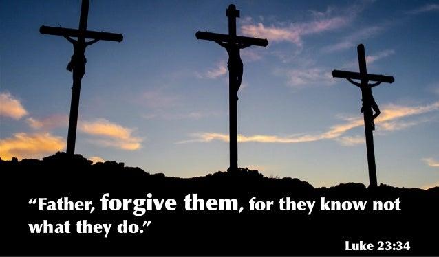 How Often Should I Forgive?? | Ringneck Migration: A ...